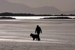 Caminante del perro en la playa Imagen de archivo