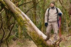 Caminante después de clibing el árbol Imagenes de archivo