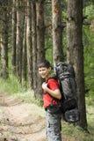 Caminante en bosque Imágenes de archivo libres de regalías