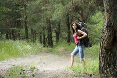 Caminante en bosque Fotografía de archivo libre de regalías