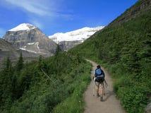 Caminante en el llano del rastro de seis glaciares Imagen de archivo libre de regalías