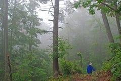 Caminante en la niebla fotos de archivo libres de regalías