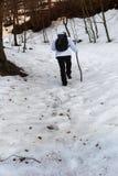 Caminante en la nieve Fotos de archivo