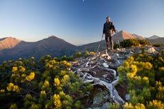 Caminante en las montañas de Tatras Fotografía de archivo
