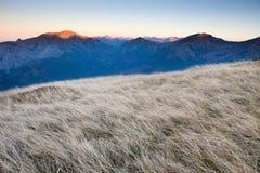Caminante en las montañas de Tatras Foto de archivo