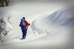 Caminante en nieve Imagen de archivo libre de regalías