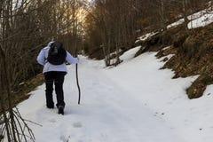 Caminante en nieve Imagen de archivo