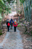 Caminante extranjeros en la manera de Nakasendo en invierno Foto de archivo libre de regalías
