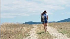 Caminante femenino activo que disfruta del paisaje de la montaña rodeado por vista posterior de la hierba secada almacen de metraje de vídeo