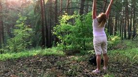 Caminante femenino joven en bosque almacen de video