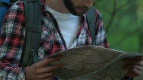 Caminante masculino perdido en bosque, backpacker que mira el mapa y que emigra en arbolado almacen de video