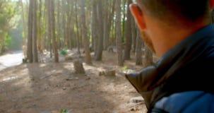Caminante masculino que mira el mapa en el bosque 4k almacen de video