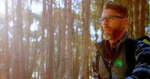 Caminante masculino que se sienta con el mapa en el bosque 4k almacen de metraje de vídeo