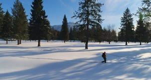 Caminante que camina en un paisaje nevoso 4k metrajes