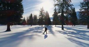 Caminante que camina en un paisaje nevoso 4k almacen de video
