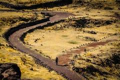 Caminante que camina un rastro del inka en el puno Perú Fotos de archivo
