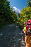Caminante que mira hacia las montañas Imagenes de archivo