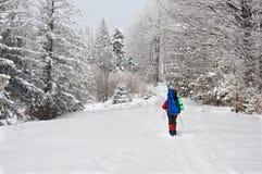 Caminante solo en montaña del invierno Foto de archivo