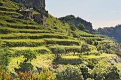 Caminante, trekker, trayectoria, dioses, costa de Amalfi, caminando, terrazas Foto de archivo libre de regalías
