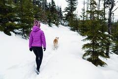 Caminante y perro, montañas de Karkonosze, Polonia Imagen de archivo libre de regalías