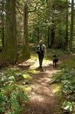 Caminante y su perro imagenes de archivo