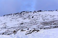 Caminantes en el camino nevado de la montaña Fotos de archivo