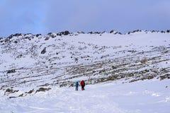 Caminantes en el camino nevado de la montaña Fotografía de archivo