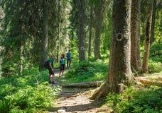 Caminantes en el rastro de montaña Foto de archivo libre de regalías