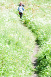 Caminantes en la trayectoria Fotos de archivo