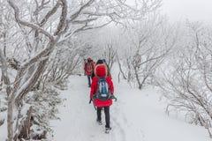 Caminantes en las montañas del invierno, colina fantástica de la nieve del paisaje del invierno Imagen de archivo