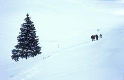 Caminantes en nieve del invierno Foto de archivo libre de regalías