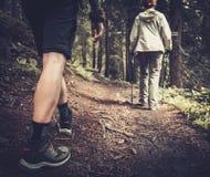 Caminantes en un bosque Foto de archivo libre de regalías