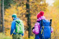 Caminantes felices de los pares del hombre y de la mujer que caminan en bosque del otoño foto de archivo libre de regalías
