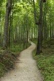 Caminantes a lo largo de la trayectoria de bosque - nacional representado de las rocas a orillas del lago Fotografía de archivo