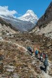Caminantes que caminan en vertical del rastro de montaña imagen de archivo libre de regalías