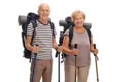 Caminantes que presentan y que miran la cámara Fotos de archivo