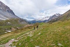 Caminantes que suben cuesta arriba en rastro de montaña rocosa escarpado Aventuras y exploración del verano en las montañas Cielo imagen de archivo libre de regalías