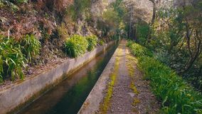 Caminar camino en el canal de Levada almacen de metraje de vídeo