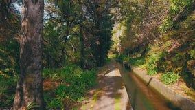 Caminar camino en el canal de Levada metrajes