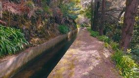 Caminar camino en el canal de Levada almacen de video