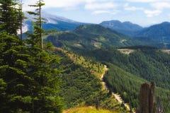 Caminar el pico del castillo en Gifford Pinchot National Forest Imagen de archivo