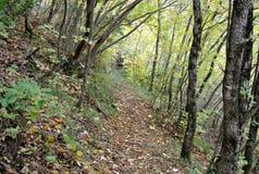 Caminar el rastro de montaña, Giuguno, Italia imagenes de archivo