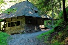 Caminar impresiones en el bosque negro en Alemania Foto de archivo libre de regalías