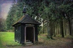 Caminar impresiones en el bosque negro en Alemania Foto de archivo