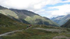 Caminar la montaña Fotos de archivo