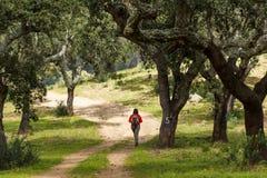 Caminar la trayectoria Alentejo con la persona Fotos de archivo libres de regalías