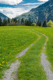 Caminar la trayectoria en las montañas bávaras Foto de archivo