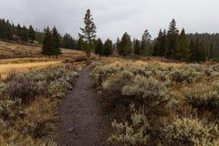 Caminar la trayectoria en Yellowstone Imagen de archivo