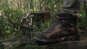 Caminar las botas primer, hombre que camina a través de un árbol caido en el bosque 4K almacen de metraje de vídeo