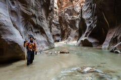 Caminar los estrechos en Zion NP Fotos de archivo